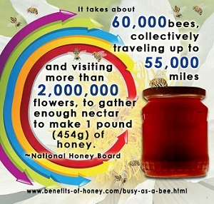 1 pound of honey image