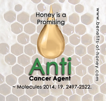 Honey is anti cancer poster image