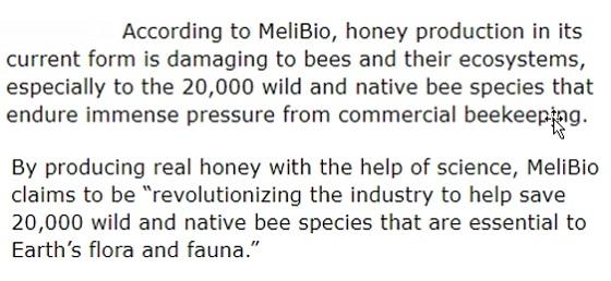 bee-less honey usp image