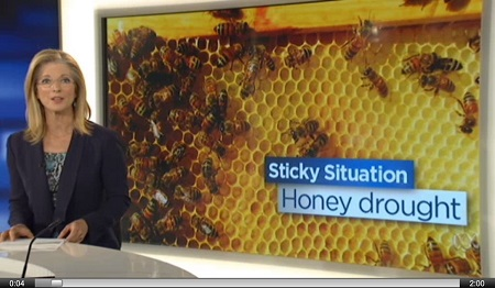 Australia honey drought image