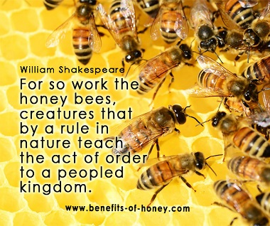 bee peopled kingdom poster image