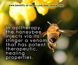 bee venom therapy poster image