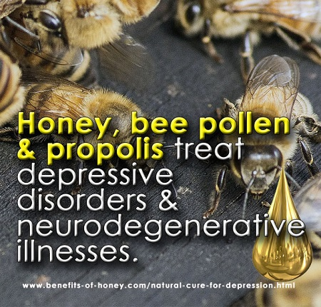 bee products as natural cure for depression image