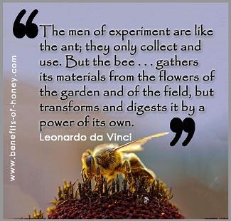 bee's honey poster image