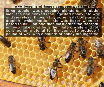 beeswax poster image