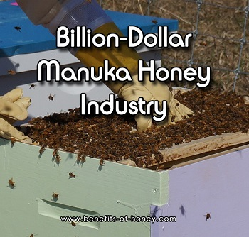 billion dollar manuka honey industry image