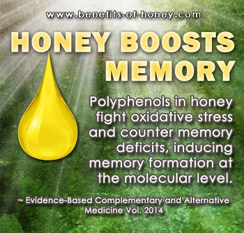 honey boosts memory poster image