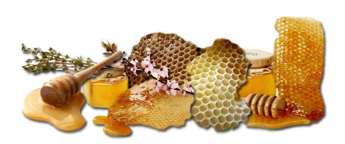 honey news image