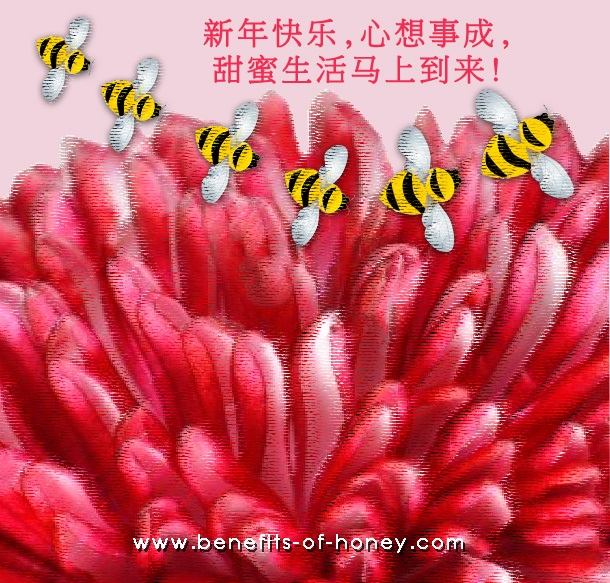 happy chinese new year 2014 image