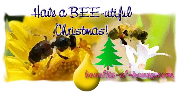 christmas gift idea image