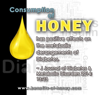 Honey and Diabetics image