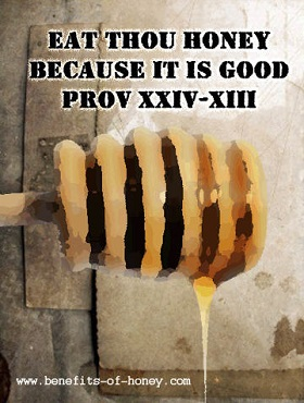 eat honey proverb image