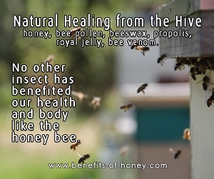 healing from the hive image