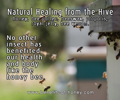 honey bee products image
