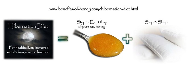 hibernation honey diet image