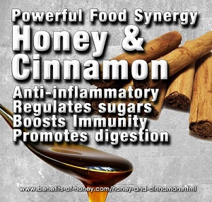 honey cinnamon image