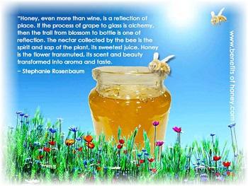 honey floral varietals image