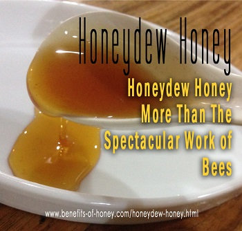 honeydew honey bee image