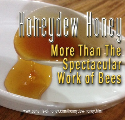 honeydew honey bee image