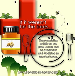save the honeybees poster image