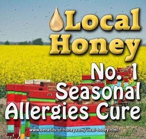 pollen allergy cure with honey poster image