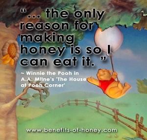 pooh loves honey poster image