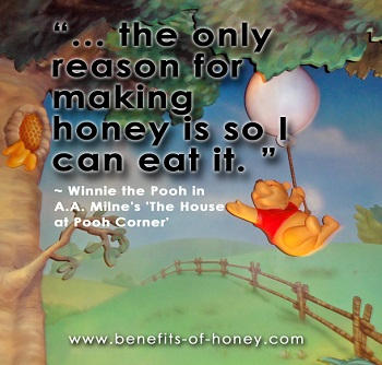 pooh bear loves honey poster image