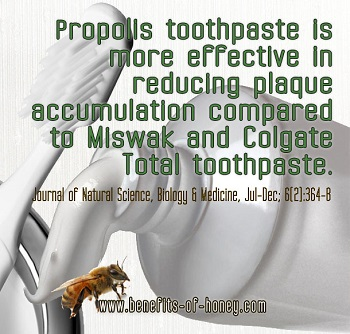 propolis drop picture image