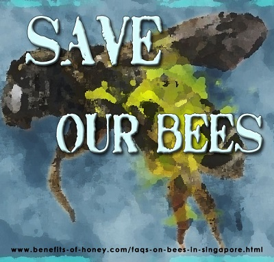save our bees image