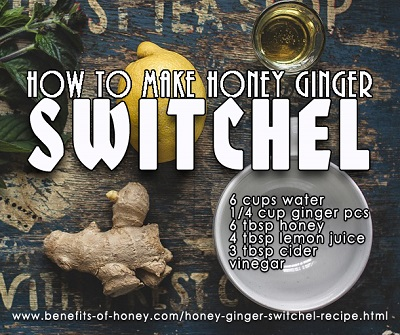 Honey Ginger Switchel Recipe poster image