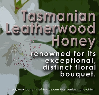 Tasmanian leatherwood honey image