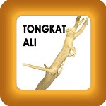 tongkat ali and honey image