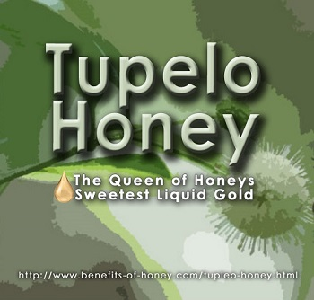 tupelo honey poster image