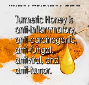Top 15 Benefits of Turmeric and Honey [Golden Honey is #1