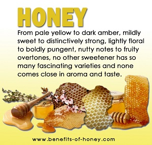 honey varieties image