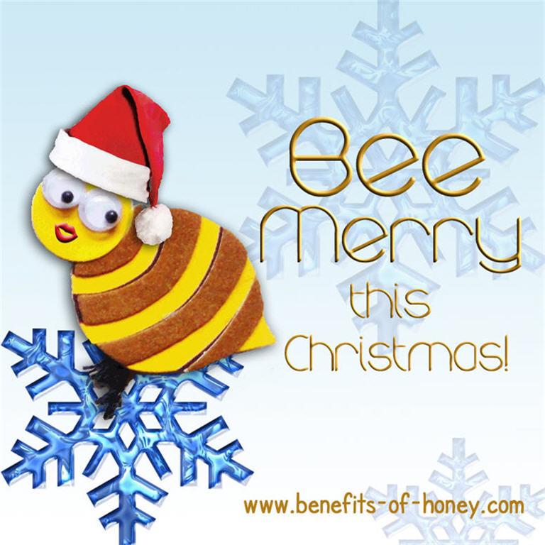 christmas 2011 image