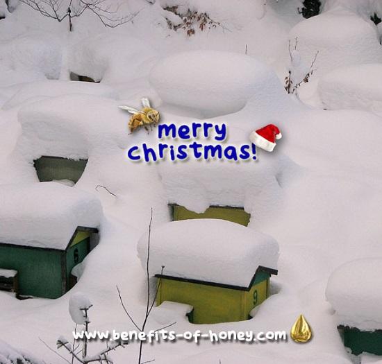 merry christmas 2017 image