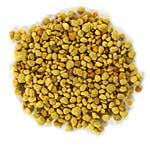 bee pollen graphic