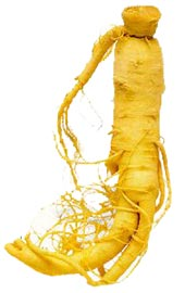 ginseng picture