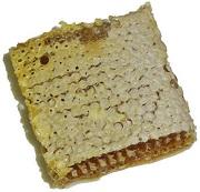 a piece of honeycomb