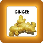 honey cure and ginger button