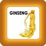 honey cure with ginseng button